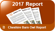 Download the Cheshire Barn Owl report 2012